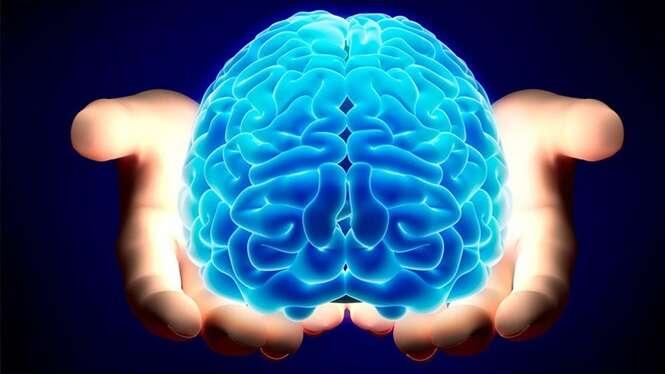 Para não deixar seu cérebro ser destruído, consuma estas 3 vitaminas