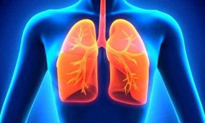 """Conheça """"remédios"""" que limpam e fortalecem os pulmões"""