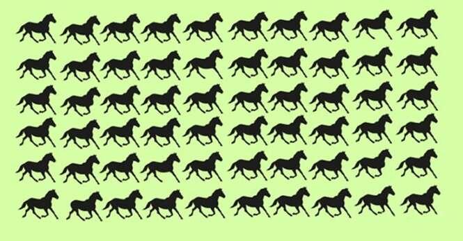 Você é capaz de achar em apenas 30 segundos os 6 cavalos diferentes dos demais?