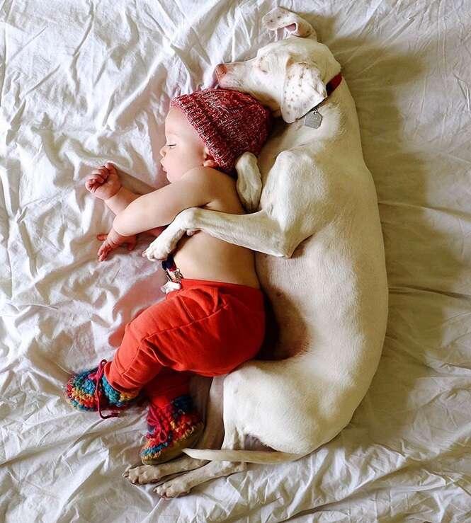 Este cão sofreu abusos e ficou com medo de todos, exceto deste bebê, e as fotos dois juntos vão mexer com você