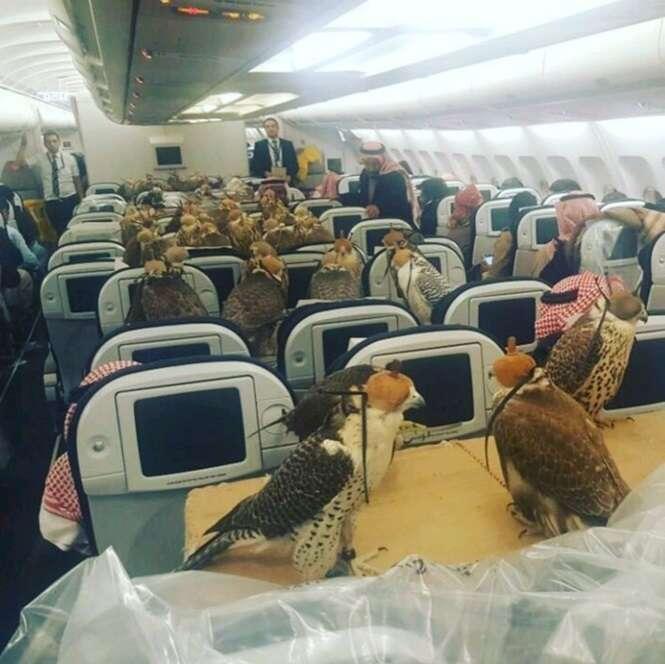 Imagens provando que qualquer coisa pode acontecer durante um voo