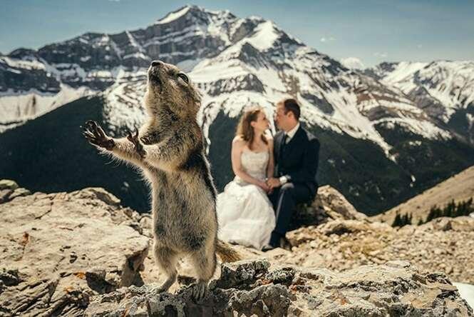Fotos que mataram recém-casados de rir