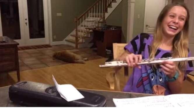 """Vídeo hilário mostra cachorro louco para dormir """"resmungando"""" de sua dona ficar tocando flauta"""