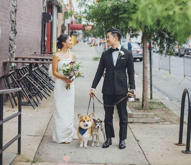 Fotos de casais que encontraram formas divertidas de incluírem seus cães em seu casamento