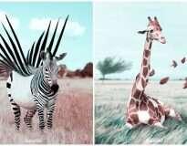 Artista usa Photoshop de maneira singular para criar incríveis animais